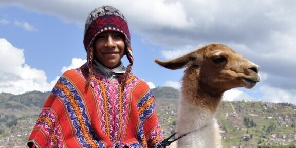 Sajama Park Bolivia